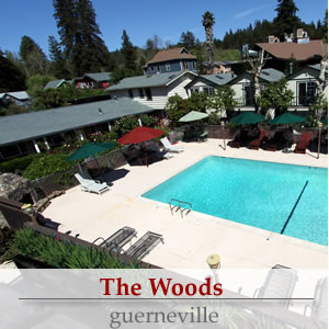 the woods, guerneville ca