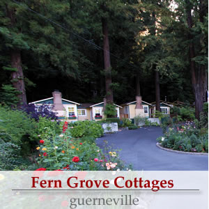 fern grove cottages in the russian river valley - a sonoma wine country bed and breakfast inn