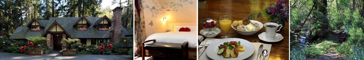 sonoma wine country inns avalon bed and breakfast sebastopol