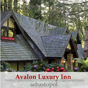 sonoma wine country inns avalon luxury bed and breakfast inn